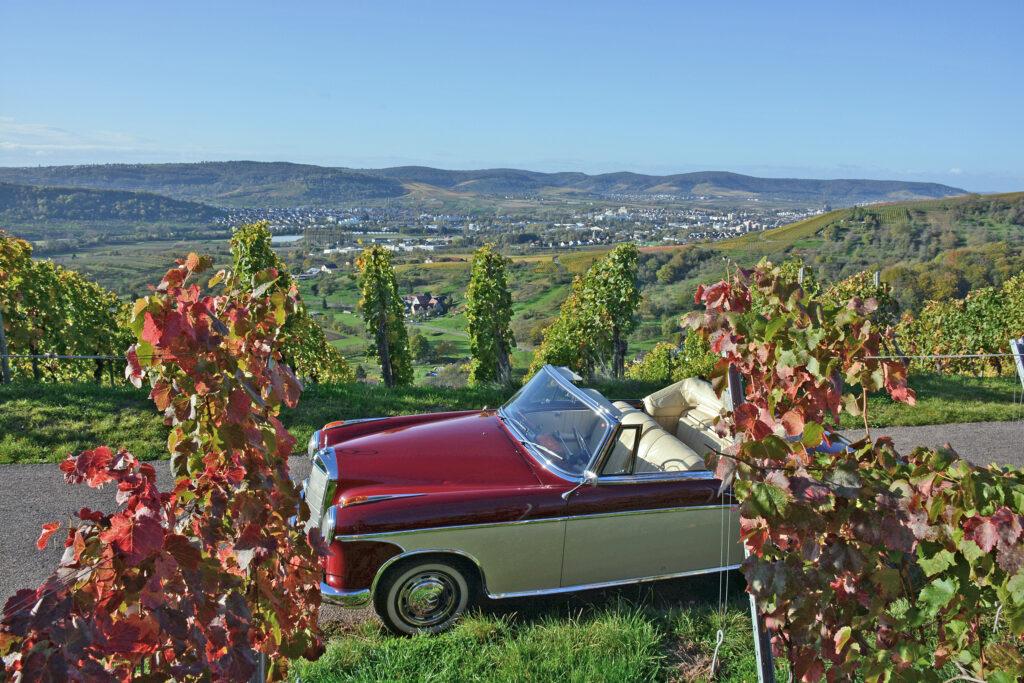 Herbst im Rems_Murr-Kreis
